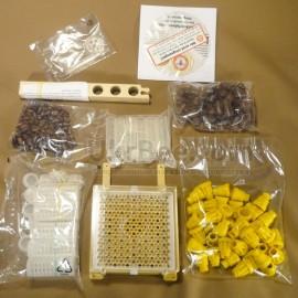Jenter's honeycomb (Product Set No. 011)