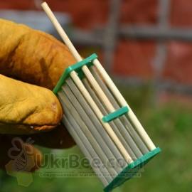 Zelle von Bambus für die Bienenkönigin,